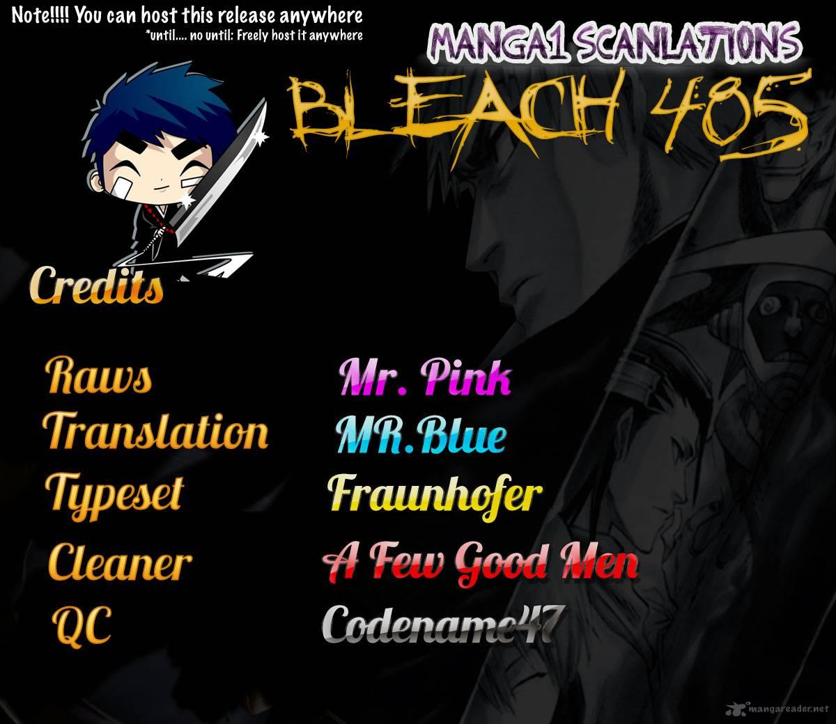 Bleach 485