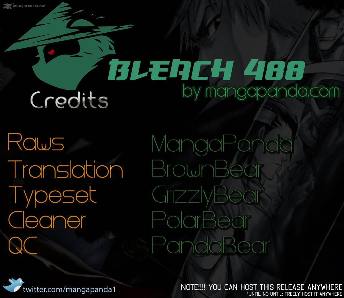 Bleach 488